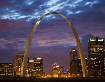 Pest Control St Louis