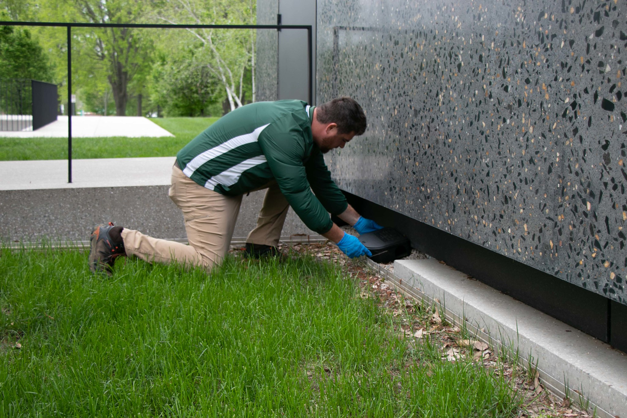 Commercial Pest Control Tips