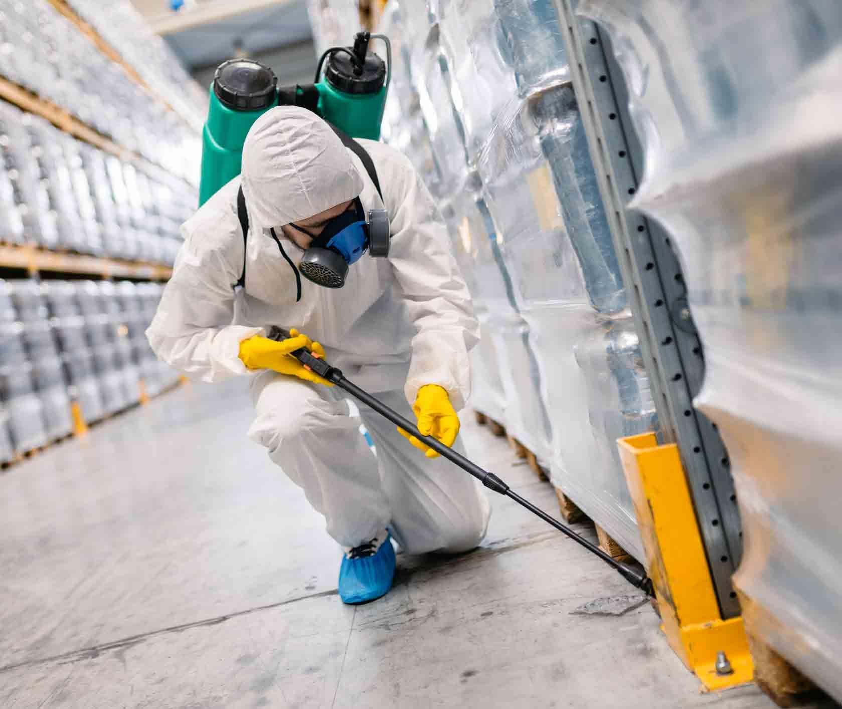 Warehouse Pest Control Best Practices